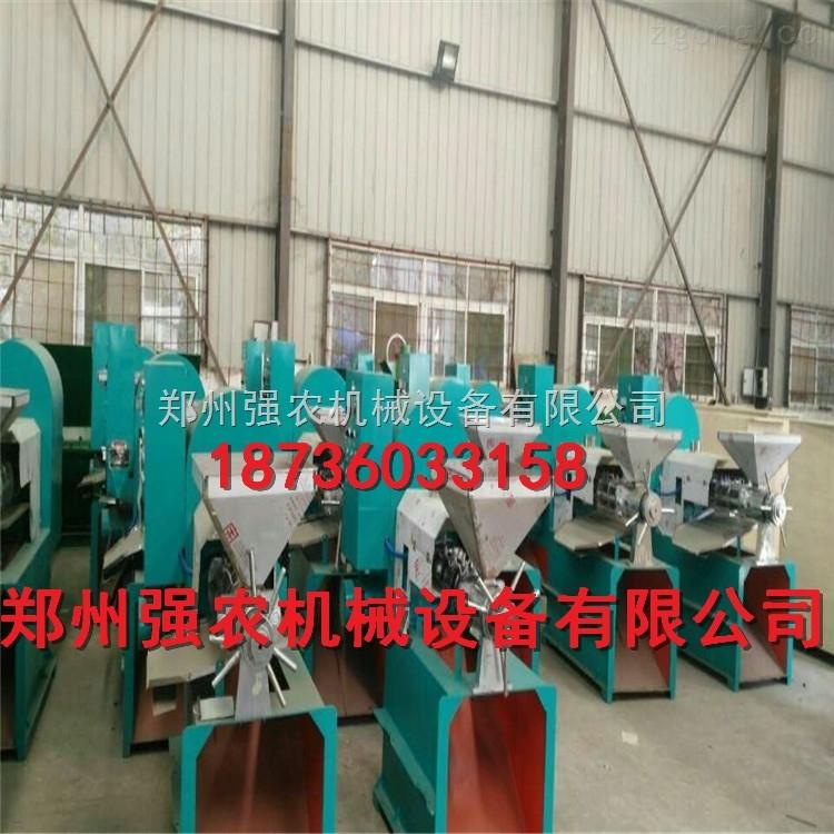 螺旋榨油机厂家直销QN-100螺旋榨油机原装现货